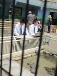平成24年度 校外スケッチ<中学2年生>【11】