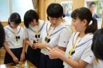 平成28年度体験入学<春日野中学校>【37】